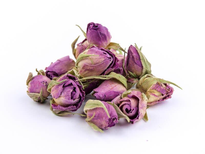 Ruža pupoljci